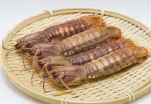 青空レストランで紹介のお店・蝦蛄(シャコ)の通販でお取り寄せ