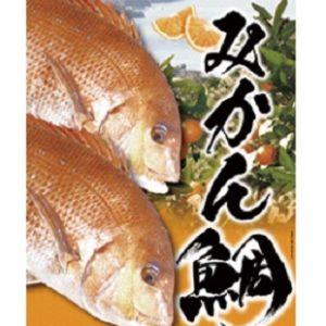 みかん鯛 愛媛県宇和島産ブランド真鯛 いのお飯