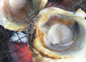 青空レストランの陸奥湾ホタテ貝をお取り寄せ