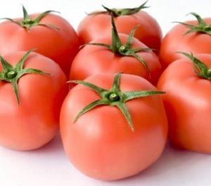 福井のブランドトマト越のルビー・森八大名閣トマトゼリー伝兵衛 通販