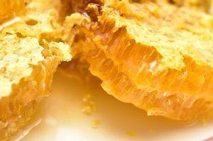 萩・石見空港の生蜂蜜 青空レストランで紹介の空港はちみつ通販