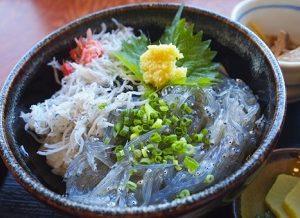 生しらす丼(朝ごはんジャーニー・ZIP!)神奈川県 丸八丸 通販・お取り寄せ