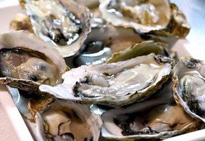 坂越産牡蠣 青空レストランで兵庫県赤穂市坂越湾の生牡蠣 カキみそ 鎌島水産 通販