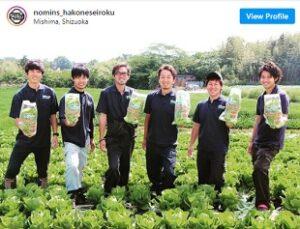 青空レストランで放映 ロメインレタスを栽培する箱根西麓のうみんず 野菜セットをお取り寄せ