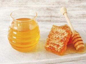 あさイチで紹介の北海道訓子府町で採れる国産蜂蜜 菅野養蜂場 通販お取り寄せ