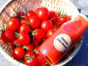 湘南佐藤農園 フルーツトマト・フルーツトマトジュースの販売・注文・通販 神奈川県藤沢市